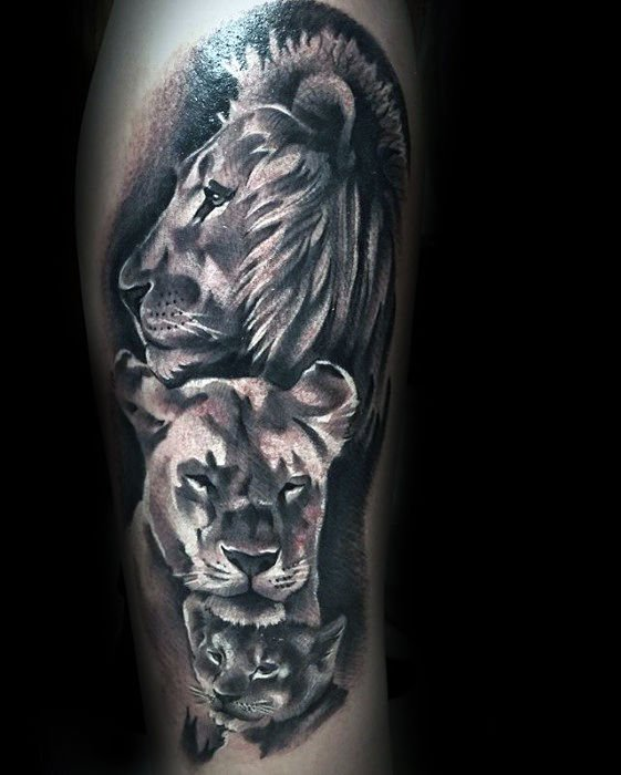 Lion Themed Design
